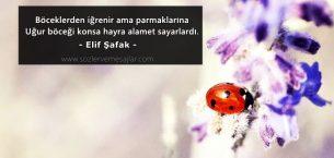 Uğur Böceği İle İlgili Sözler